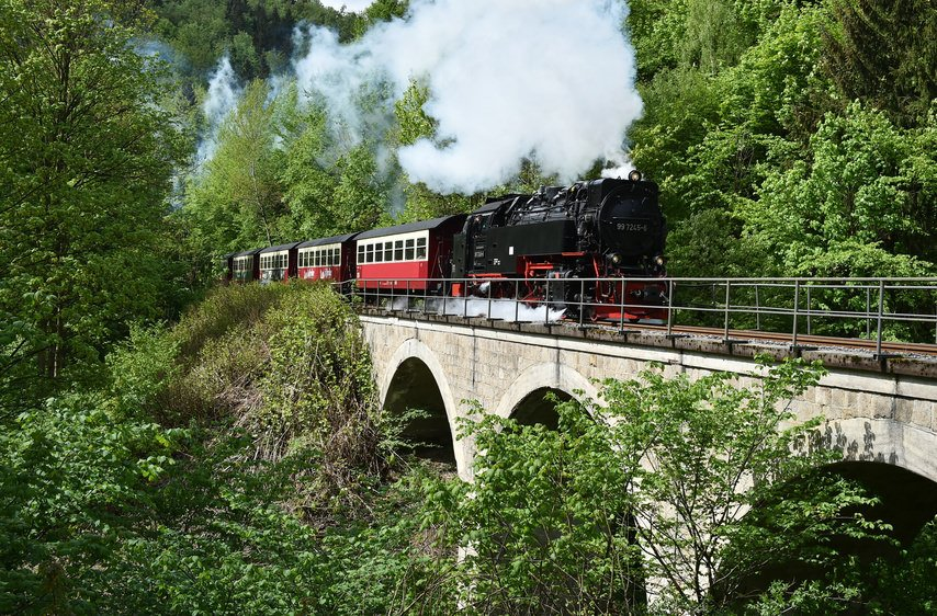 Harz Train
