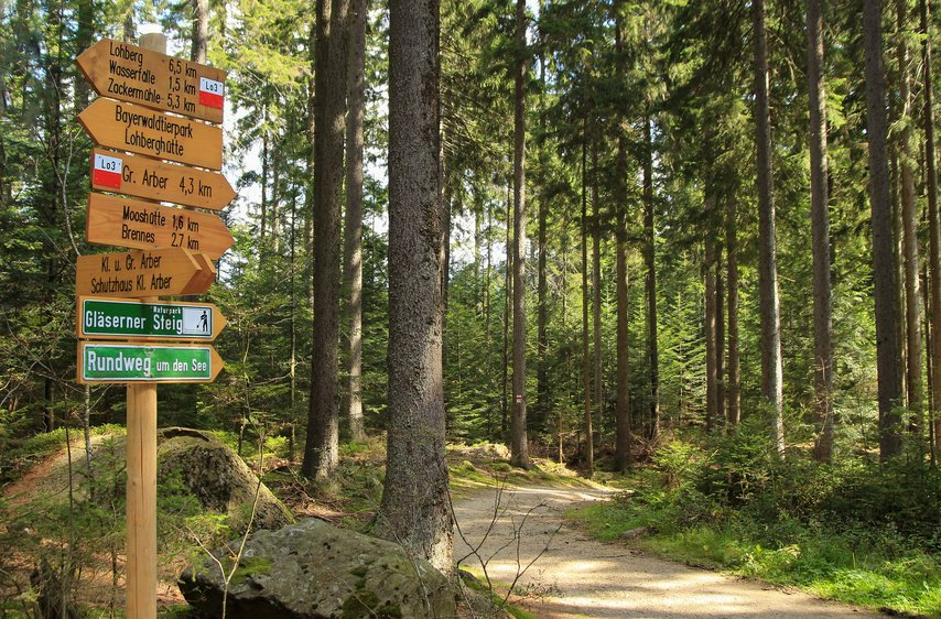 Signpost in the Bavarian Forest