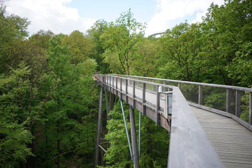 Steigerwald treetop path
