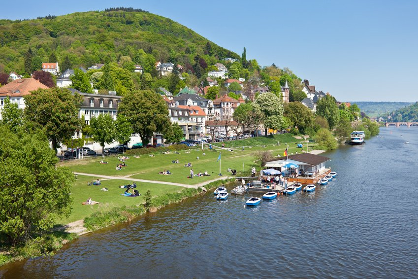 Heidelberg Neckarwiese