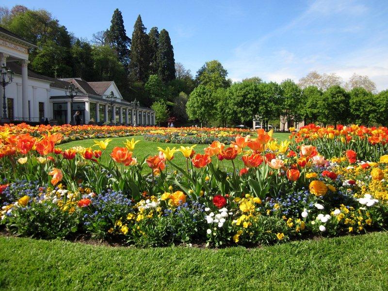 Spring flowergarden