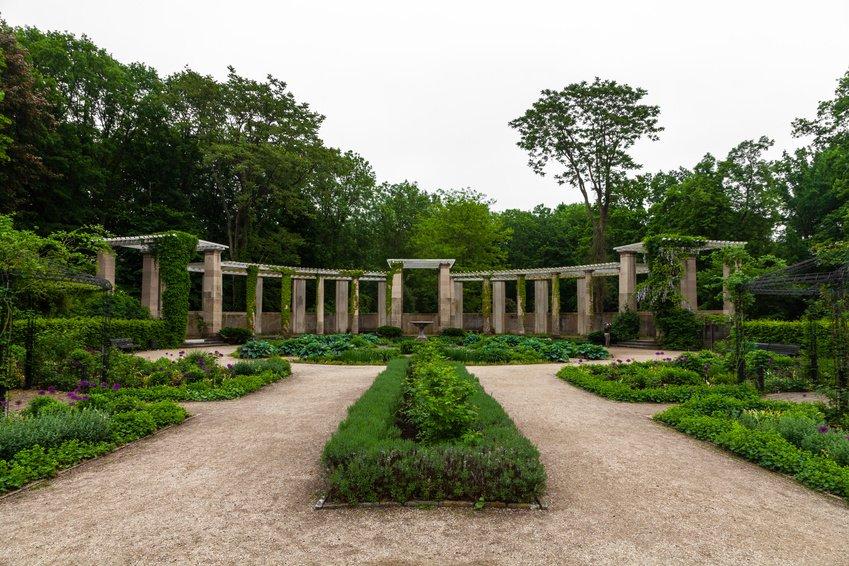 Rosengarten at Tiergarten Berlin