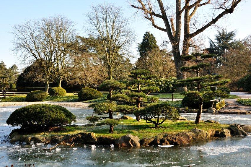Japanischer Garten Düsseldorf Tourismde Awesome Travel