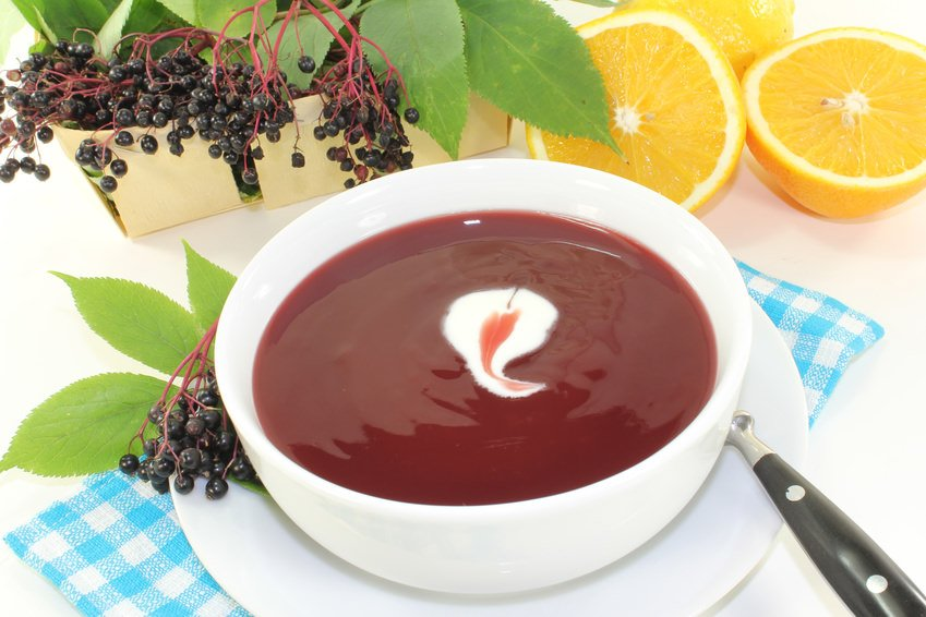 Elderberry soup